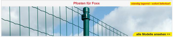 Pfosten für Foxx