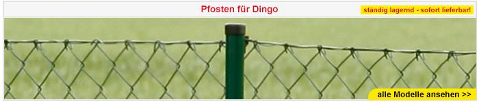 Maschendrahtzaun Dingo - Draht- und Rollenzäune - Zäune & Tore