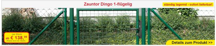 Zauntor Dingo 1-flügelig